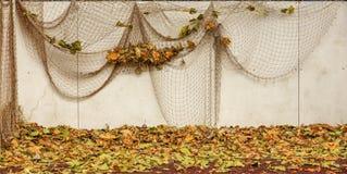 geometrisk målningsmodell för abstrakt dekorativa blommor Arkivfoto