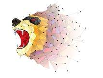 Geometrisk modell för låg polygonBJÖRN ILSKEN vektor för BJÖRN royaltyfri illustrationer