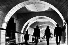 Geometrisk talföljdstadslandskap fotografering för bildbyråer