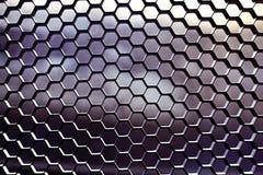 Geometrisk texturskyddsgaller Royaltyfri Fotografi