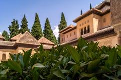 Geometriska former av taken av Alhambraen i Granada Arkivfoton