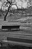 Benches geometry in black and white royalty free stock images