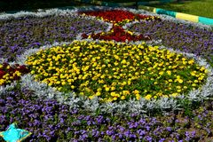 The geometry of the city flower beds. Lytkarino royalty free stock photo