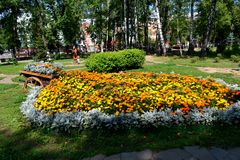 The geometry of the city flower beds Stock Photography