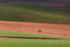 Geometry of fields. Autumn in Moravia Royalty Free Stock Photos