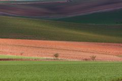 Geometry of fields. Autumn in Moravia Stock Image