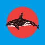 Geometry grampus whale illustration. royalty free illustration
