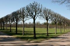 Geometry in park Stock Image