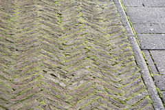 Geometry pattern background of cobblestone pavement with moss gr Stock Image