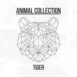 Geometryczna tygrys głowa obraz royalty free