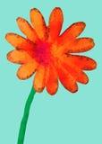 Geometryczny cynia kwiat Zdjęcia Stock
