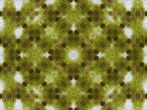 Geometryczny deseniowy tło zielona trawa Fotografia Stock