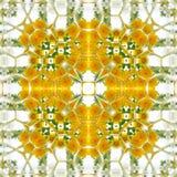 Geometryczny kwadrata wzór rumianek i dandelion w żółtym i białym Obraz Royalty Free