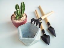 Geometryczny pentagonu betonu plantator z kaktusowym rośliny i ogródu narzędzia setem obraz royalty free
