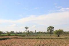 Geoogst gebied Stock Foto's