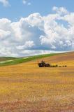 Geoogst tarwegebied met tractor Stock Foto's