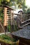 Geoogste die rijst wordt gehangen om in de zon te drogen Stock Foto's