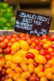 Geoogste enkel tomaten voor verkoop bij lokale landbouwbedrijfmarkt Kopenhagen, Denemarken Stock Afbeelding