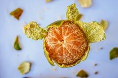 Geopend Fruit Royalty-vrije Stock Afbeeldingen
