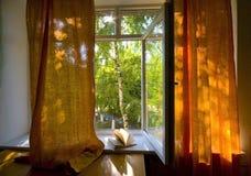 Geopend plastic venster Royalty-vrije Stock Afbeelding