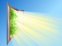 Geopend venster Stock Afbeeldingen