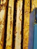 Geopende bijenkorf stock afbeelding