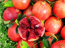 Geopende granaatappel Stock Foto