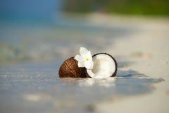 Geopende kokosnoot op het zandige strand van tropisch eiland Royalty-vrije Stock Foto's