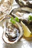 Geopende oester Royalty-vrije Stock Foto