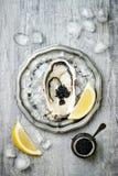 Geopende oester met zwarte steurkaviaar en citroen op ijs in metaalplaat op grijze concrete achtergrond De hoogste vlakke mening, Royalty-vrije Stock Foto