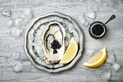 Geopende oester met zwarte steurkaviaar en citroen op ijs in metaalplaat op grijze concrete achtergrond De hoogste vlakke mening, Royalty-vrije Stock Fotografie