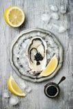 Geopende oester met zwarte steurkaviaar en citroen op ijs in metaalplaat op grijze concrete achtergrond De hoogste vlakke mening, Royalty-vrije Stock Afbeelding