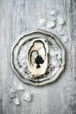 Geopende oester met zwarte steurkaviaar en citroen op ijs in metaalplaat op grijze concrete achtergrond De hoogste vlakke mening, Royalty-vrije Stock Foto's