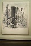 George Baselitz's painting Stock Image