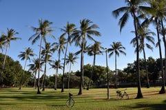 George Brown Botanic Gardens fotografia de stock royalty free