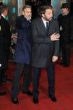Ben Affleck,George Clooney Stock Photography