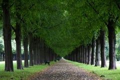 George Gardens i Hannover, Tyskland Royaltyfria Foton