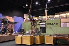 George S. Eccles Dinosaur Park in Ogden, Utah. USA Stock Image