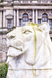 George Square lion statue Royalty Free Stock Photos