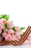 George tasiemkowi i różowi tulipany Zdjęcie Royalty Free