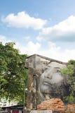 GEORGE TOWN, MALEZJA - 06 CZERWIEC, 2015: Kobiety twarzy obraz na b Zdjęcie Stock