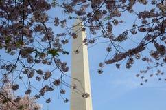 George Washington Monument Royalty-vrije Stock Foto