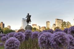 George Washington Statue with Garlic Flowers. The George Washington Statue with Garlic Flowers royalty free stock photo