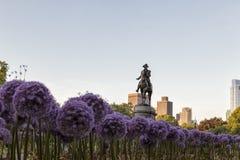 George Washington Statue with Garlic Flowers. The George Washington Statue with Garlic Flowers stock photography