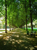 Georgengarten-Park in Hannover Lizenzfreie Stockbilder