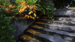 Georges Brassens garden in Paris stock photography