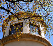 Georgetown Texas architecture tree Royalty Free Stock Photography