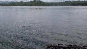 Georgië, Carter Lake, dichte omhooggaand van A van rimpelingen op Carter Lake stock video