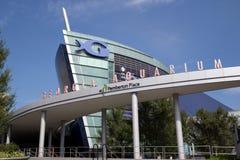 Georgia-Aquarium stockfoto