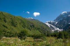 Georgia berg Royaltyfria Bilder